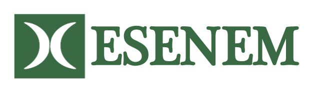 ESENEM Accountants